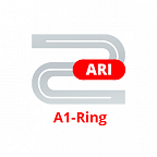 A1-Ring